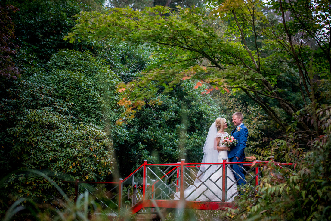 Image of the bride and groom surrounded by greenery on their wedding day in Portmeirion.